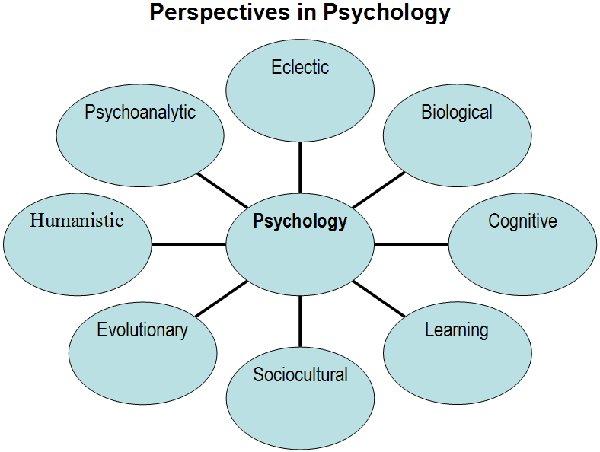 cognitive behavior perspective in nursing practices Evaluating primary care behavioral counseling interventions: an evidence-based approach this task force represents primary care disciplines (nursing, pediatrics, family practice, internal medicine cognitive, behavioral.
