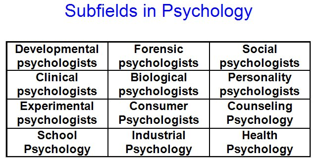 Organizational Psychology college basic subjects